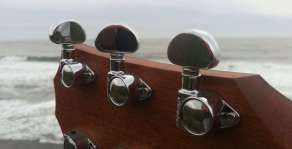 Guitar Pegs