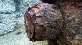 Rusty Skin