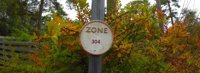 Zone 304