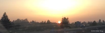 Sunspot